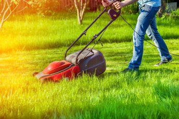 Mowing the grass could be on the way out