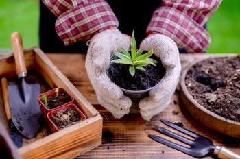 Five benefits of joining a local gardening club