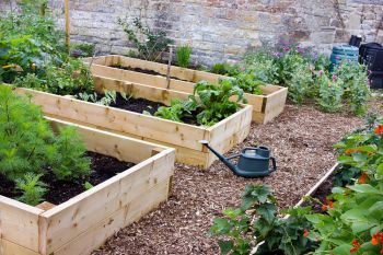 Install raised beds
